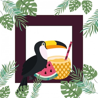 Frame of toucan and summer flower
