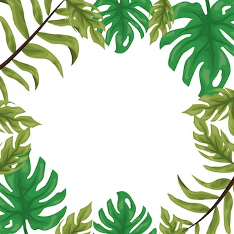 Frame of tropical green leaves on white