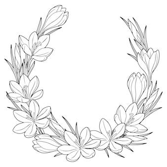 흑인과 백인 봄 꽃 크로커스와 프레임