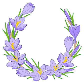 Frame with blue crocus flowers isolated on white