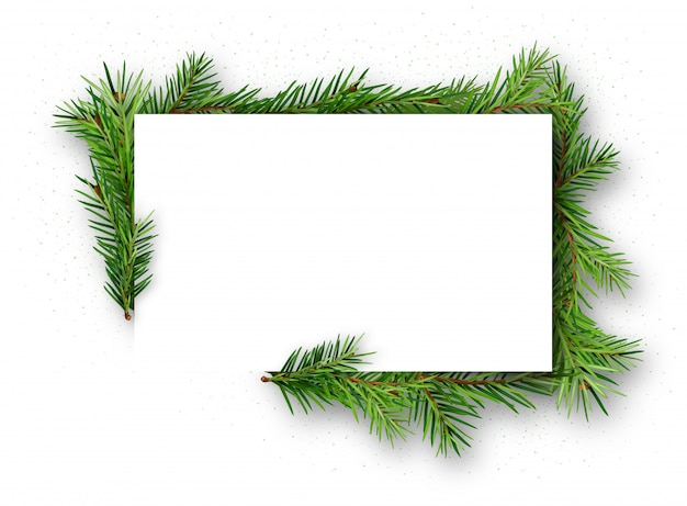 Frame with coniferous twigs on white