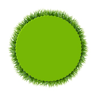 Frame with grass background