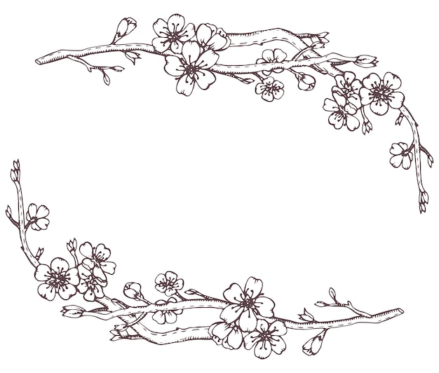 Frame with hand drawn graphic branches of a blossoming cherry