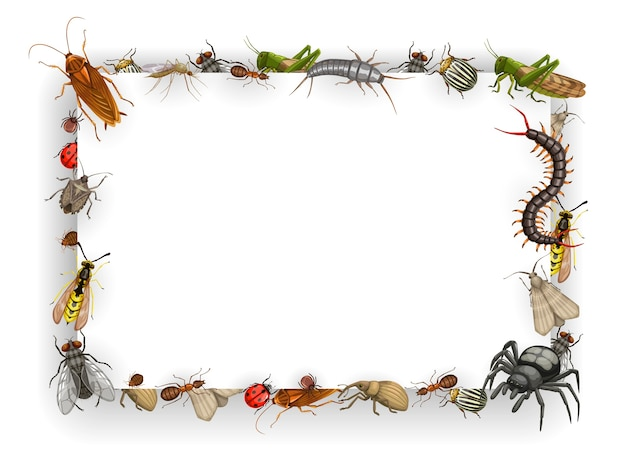 Frame with insects vector bedbug, flea and cockroach with ant, wasp, fly and, mosquito