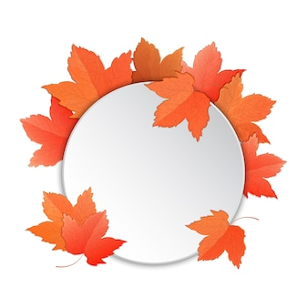 Frame with maple leaves.