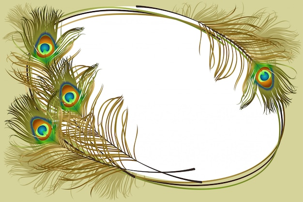 Frame with peacock feathers.