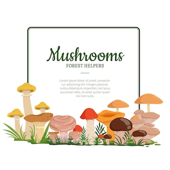 Frame with place for text and with cartoon mushrooms below illustration