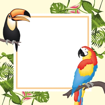 Frame with toucan macaw and leaves