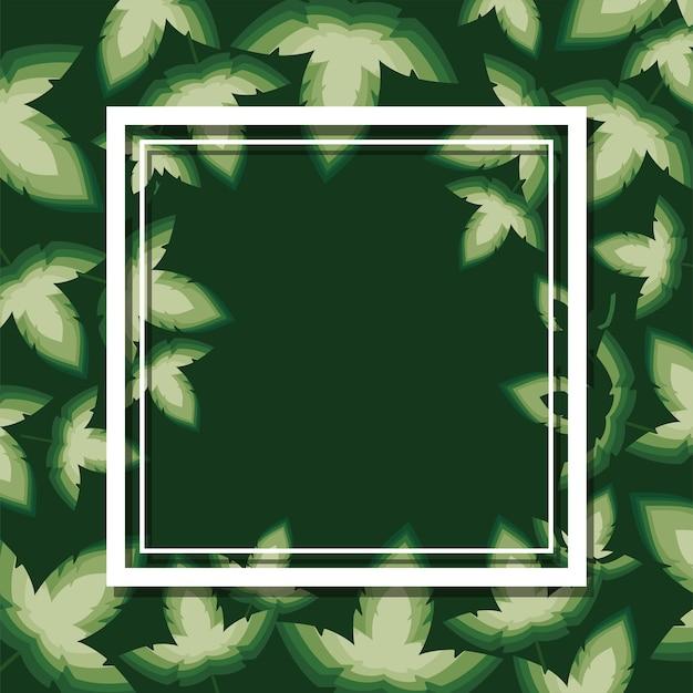 Рамка с белым цветом на дизайне иллюстрации зеленых листьев