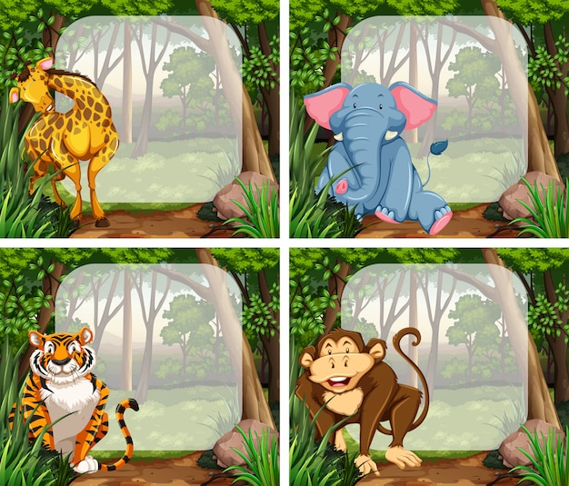 Frame with wild animals in jungle