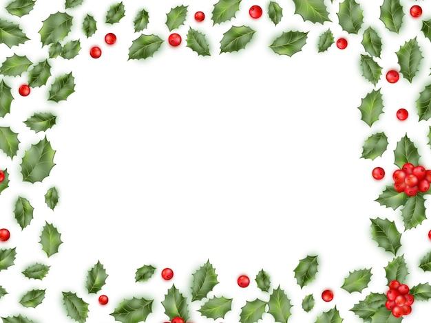 Framed holly  on white background.