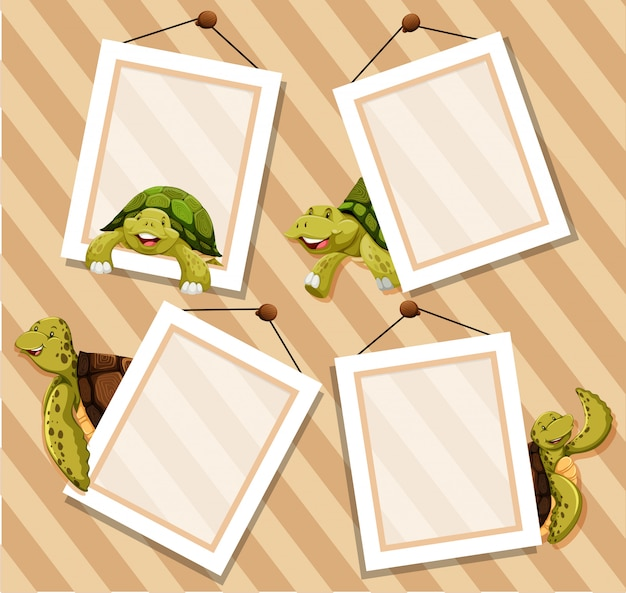 Frames on wooden background with turtles