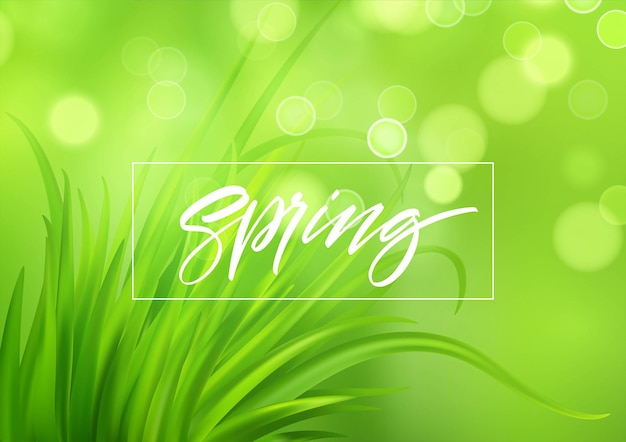Frash spring green grass background with handwriting lettering.  illustration