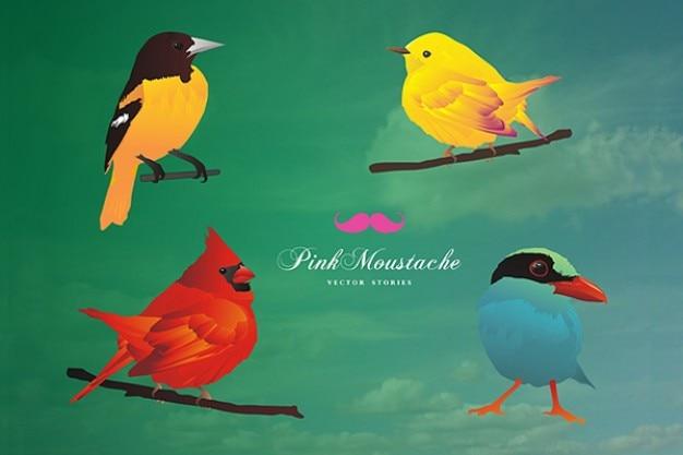 Free vector set  cute birds vector illustration