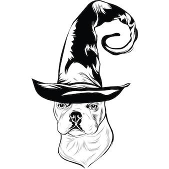 Французский бульдог в шляпе ведьмы на хэллоуин