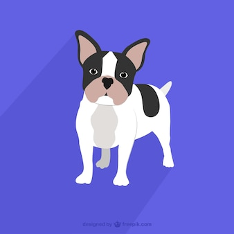 French bulldog drawing