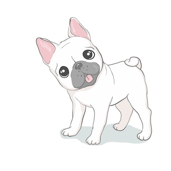 French bulldog head isolated. vector illustration