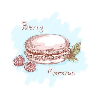 ラズベリーとミントの葉とピンクのメレンゲのフレンチマカロン。お菓子やデザート。手スケッチ