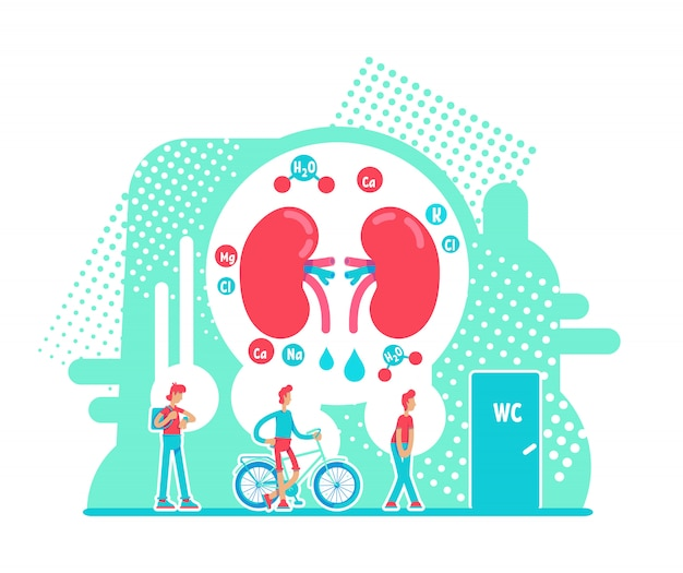 Frequent urination flat concept vector illustration. male internal organ health. chronic kidney disease 2d cartoon characters. problem with digestive system creative idea