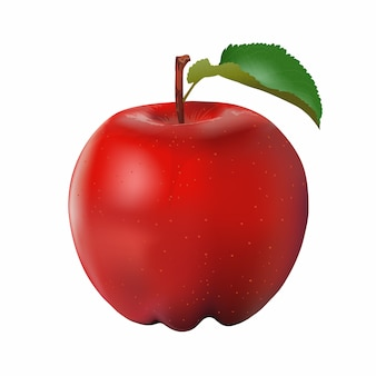 Fresh apple vector isolated on white background.