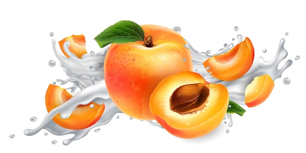 Fresh apricots in a splash of milk or yogurt on a white background. realistic illustration.