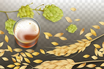 Fresh beer in glass beaker, barley or wheat ears and grains scattering around, hops flowering
