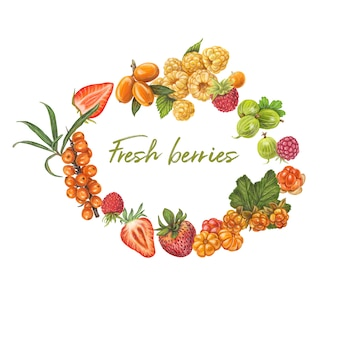 Fresh berries hand drawn vector illustration