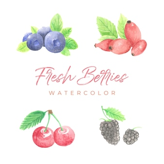 Fresh berries watercolor
