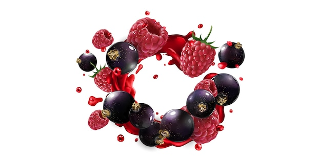 Fresh black currant and raspberry in fruit juice splashes on a white background.