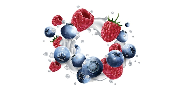 Fresh blueberries and raspberries in milk splashes on a white background. realistic illustration.