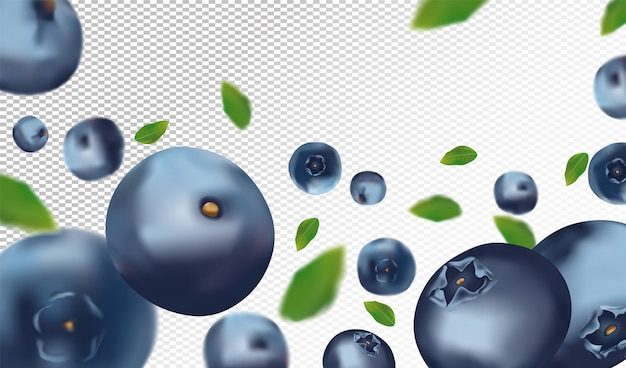 Fresh blueberry with green leaves on transparent space.