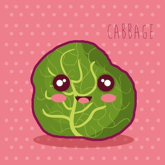 Fresh cabbage vegetable character