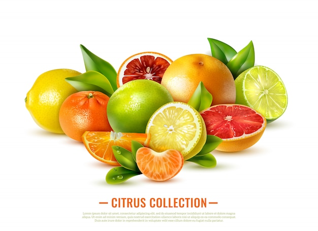 Fresh citrus fruit collection on white