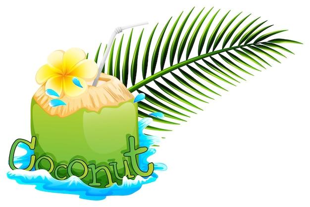 Succo di cocco fresco su sfondo bianco