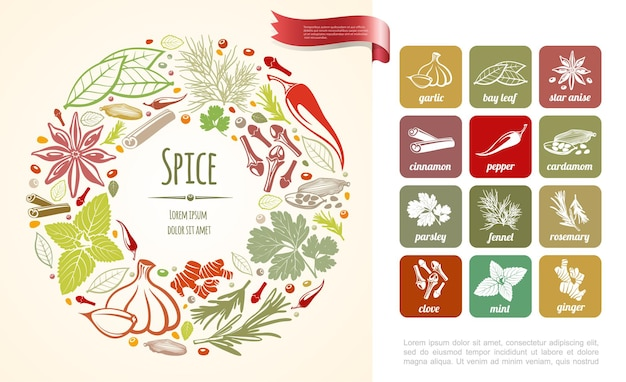 Fresh cooking spices round  with healthy plants in hand drawn style illustration
