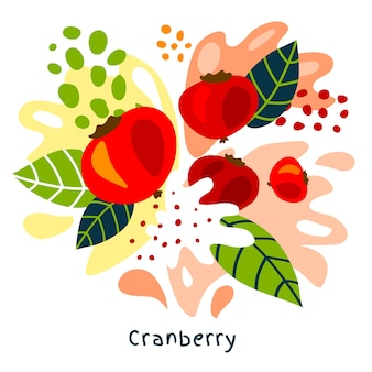 Fresh cranberry   fruits juice splash hand drawn illustration