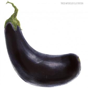 Свежий темно-синий баклажан