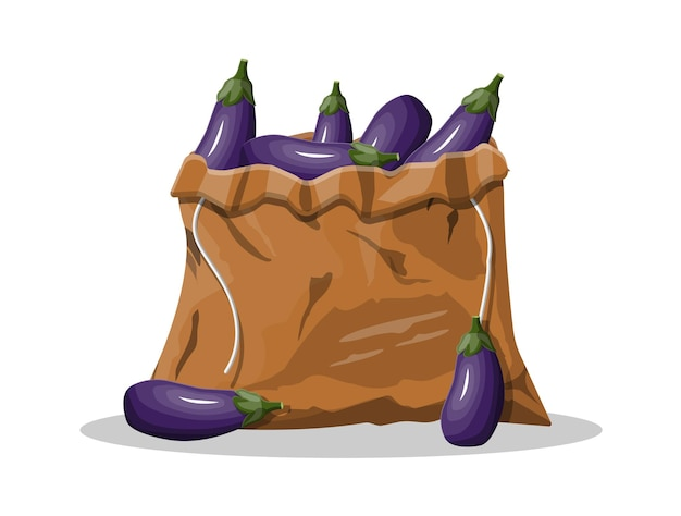 Fresh eggplant with green leaves in canvas bag