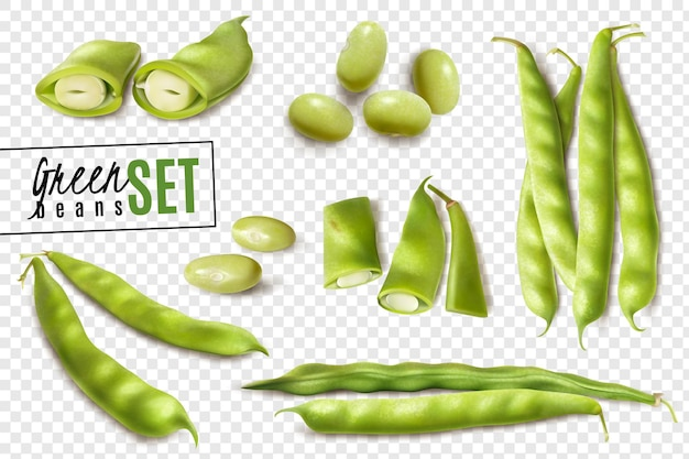 Fresh farmer market organic green beans realistic set with whole and cut pods on transparent