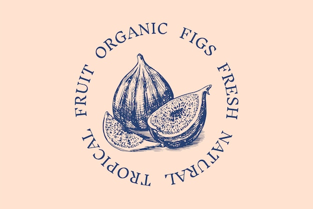 Fresh fig badge. fruit foliage label or logo. cut pieces. detox spice.