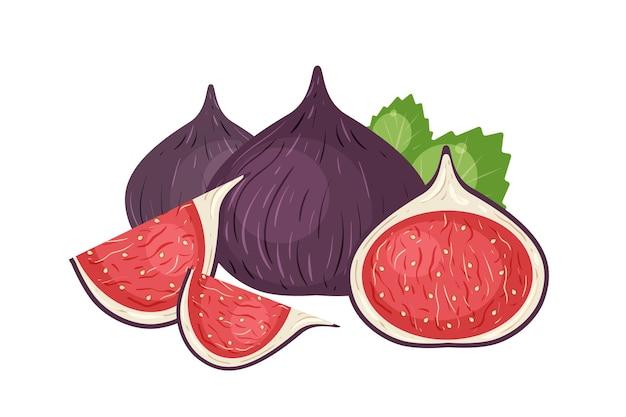 Реалистичные иллюстрации свежий инжир. вкусные кусочки спелых фруктов изолированы
