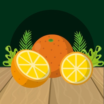Fresh fruits oranges cartoon