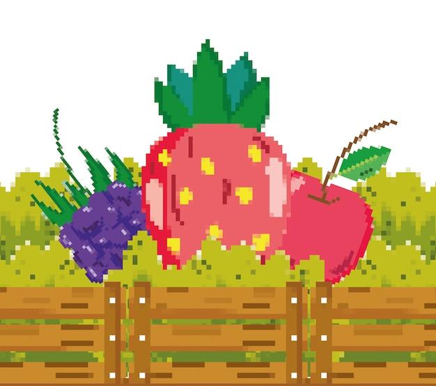신선한 과일 pixelated 만화