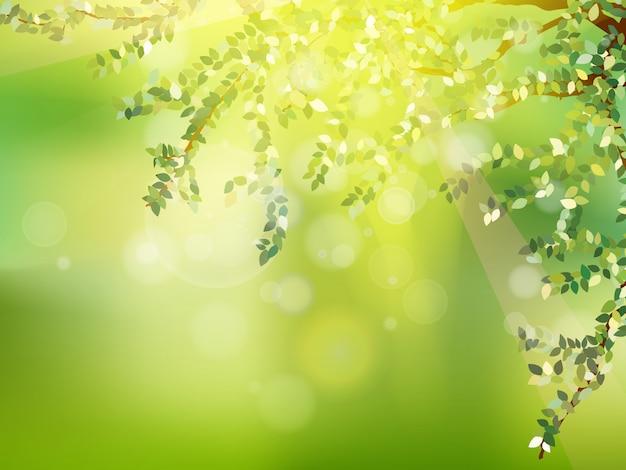 Свежие зеленые листья на натуральном.