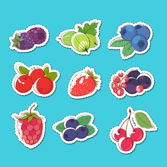 Fresh and juicy berries isolated stickers