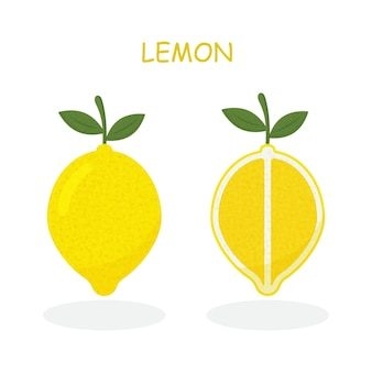 Fresh lemon fruits collection of vector illustrations