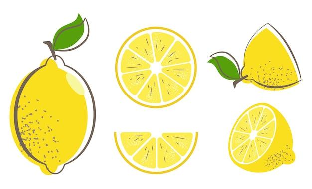 Свежие фрукты лимона с листьями. набор иллюстраций лимона.