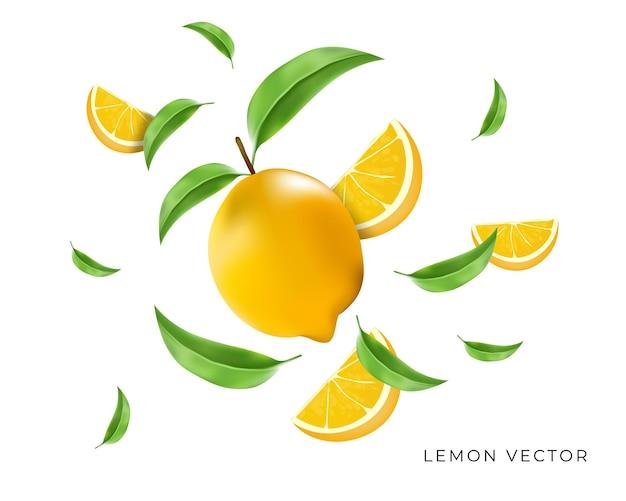 슬라이스 및 잎 구성 비행 신선한 레몬
