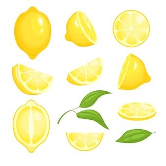 Коллекция свежих лимонов. желтые нарезанные цитрусовые с зелеными листьями для лимонада. изолированные мультфильм картинки лимонов