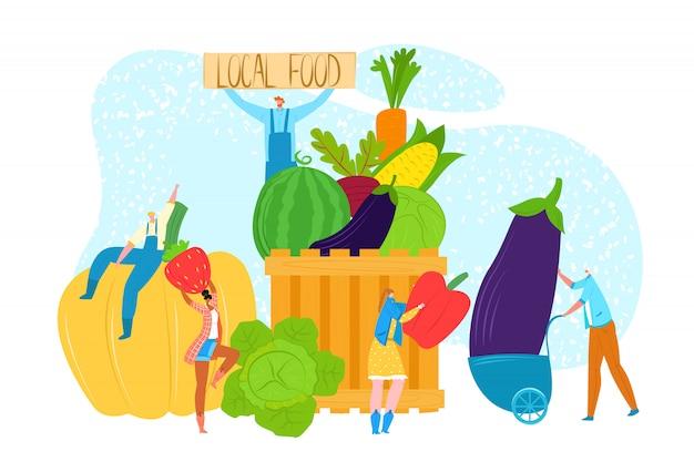 신선한 지역 음식 개념, 그림입니다. 사람 캐릭터는 농장 시장에서 유기농 건강한 계절 야채를 선택합니다. 농업, 자연 농업에서 남자 여자 사람들.